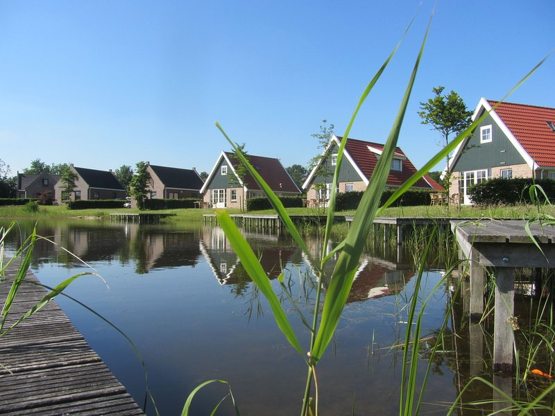 Multiple houses and a group room, close to nature reserve – semesterbostad i Provinsen Flevoland