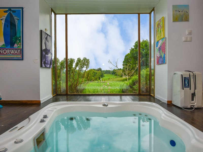 House with jacuzzi, sauna, swimming pool, beautiful view on the valley of Cantal, holiday rental in Roumegoux