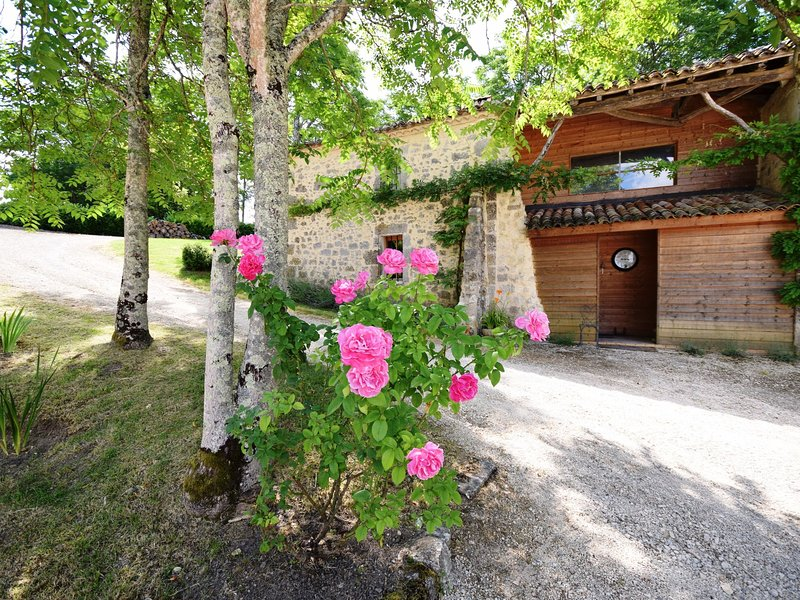 Chateau from the 12th century with modern comfort in a sublime setting., holiday rental in Castella