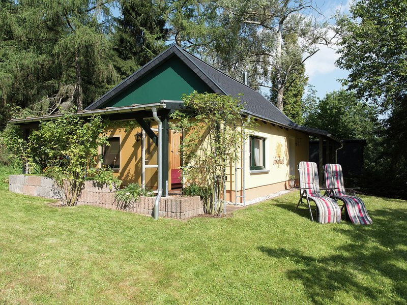 Detached holiday home with covered terrace in the beautiful Ore Mountains, alquiler vacacional en Joehstadt