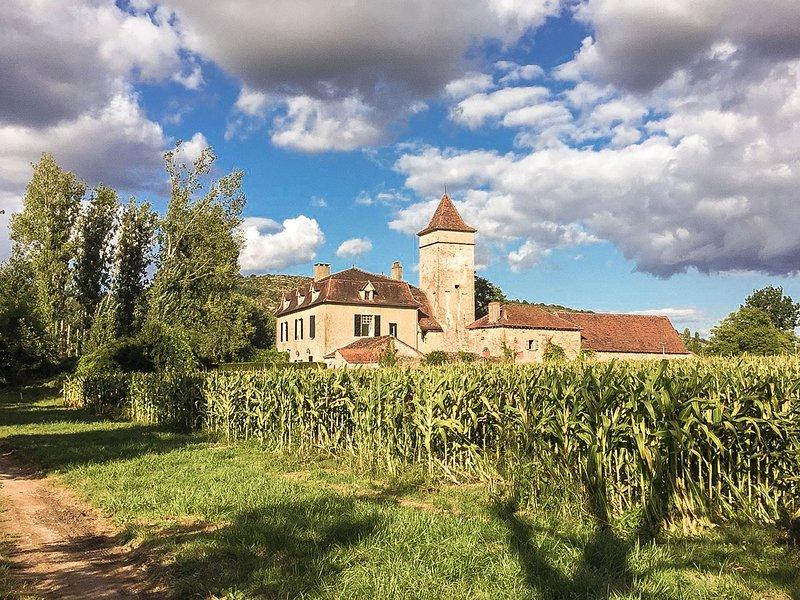Historic Mansion in Cénevières near River, holiday rental in Blars