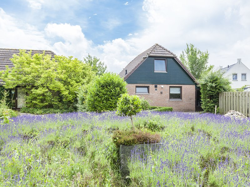 Holiday home in a small holiday park, near the Veerse lake, holiday rental in Baarland