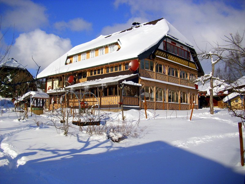 Beautiful apartment in the Black Forest with conservatory and tiled stove, location de vacances à Menzenschwand