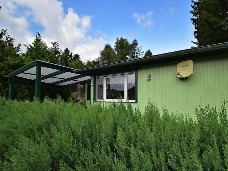Detached holiday home with terrace next to the forest in the idyllic Harz, vacation rental in Allrode