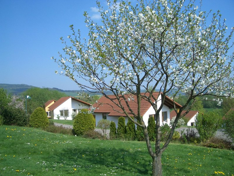 Detached single-storey bungalow with south-facing terrace – semesterbostad i Beverungen
