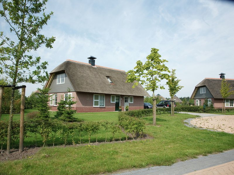 Detached holiday home with two bathrooms 2 km from Appelscha, casa vacanza a Dieverbrug