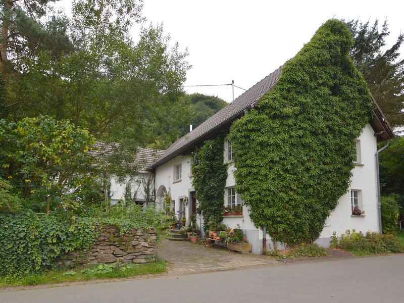 Romantic ground-floor apartment for 2 people, holiday rental in Auderath