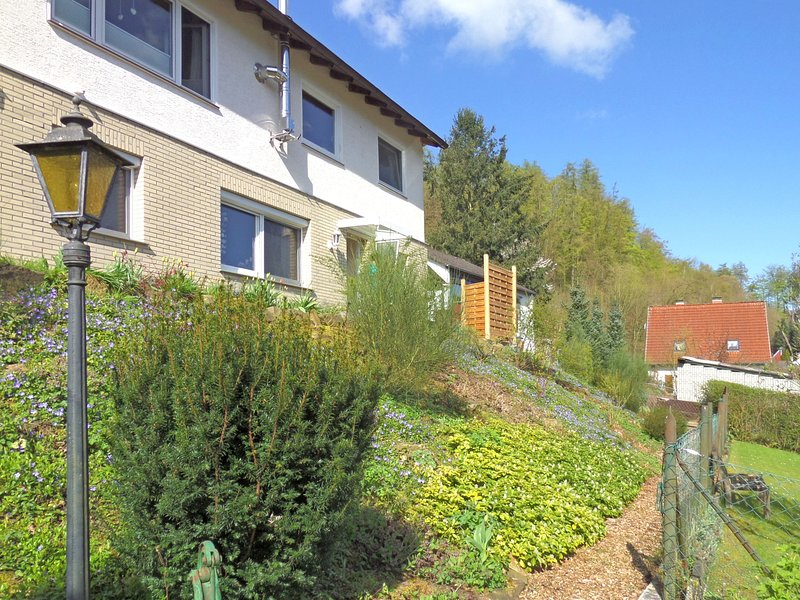 Cozy Apartment in Bad Pyrmont near Forest, holiday rental in Bodenwerder
