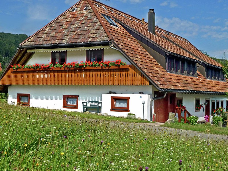 Cozy Apartment in Rickenbach Germany with Terrace, holiday rental in Herrischried