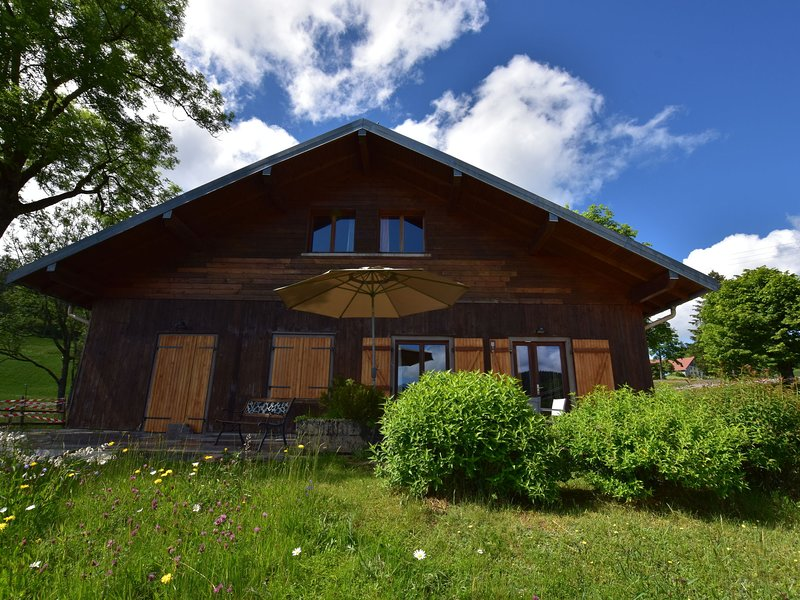 Beautiful Chalet Amidst Mountains in Saulxures-sur-Moselotte, holiday rental in Basse-sur-le-Rupt