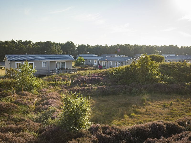 Comfortable chalet with dishwasher, in the Texel dune areal, location de vacances à Den Burg