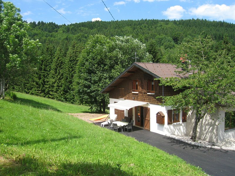 Charming Chalet in Ventron with Terrace, holiday rental in Oderen