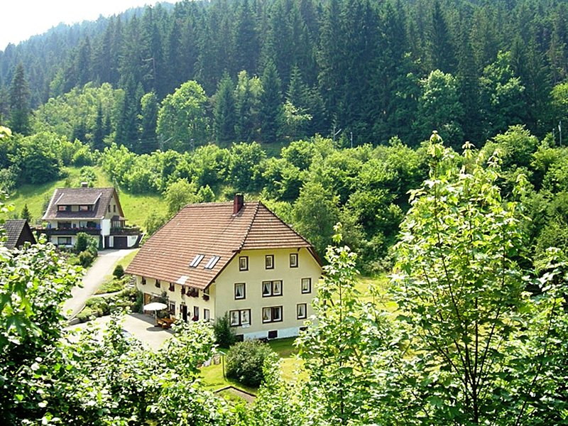Cosy apartment in country home style with use of garden, alquiler de vacaciones en Schramberg