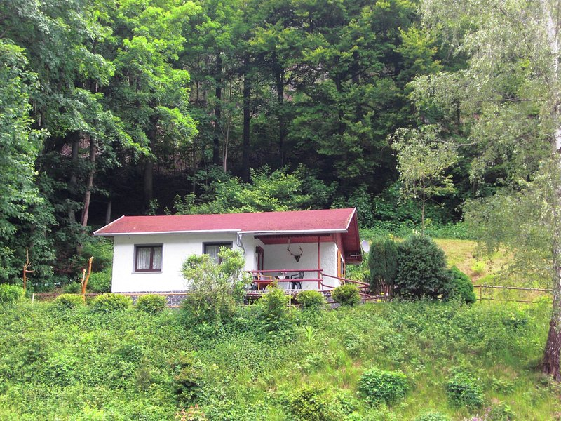 Small, secluded holiday home in Thuringia in a quiet, sunny location on the edge, holiday rental in Schleusegrund