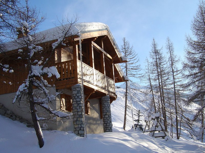 Charming chalet with a fire-place and great view on Mont Blanc, vacation rental in Vallandry