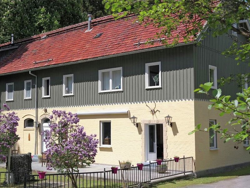 Beautiful apartment in a former coach house in the Harz, holiday rental in Stiege