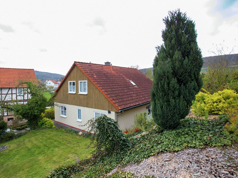 Large detached holiday home in Hesse with private garden and terrace, holiday rental in Schwarzenborn