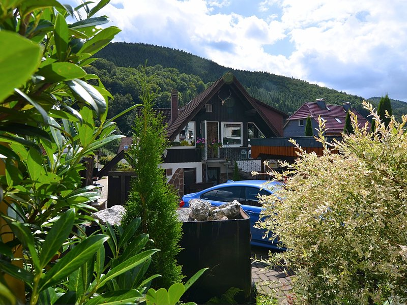 Cosy and rustic ground-floor apartment located close to the forest, location de vacances à Herzberg am Harz