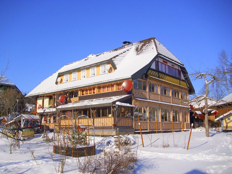 Beautiful apartment in a Black Forest house with conservatory, location de vacances à Menzenschwand