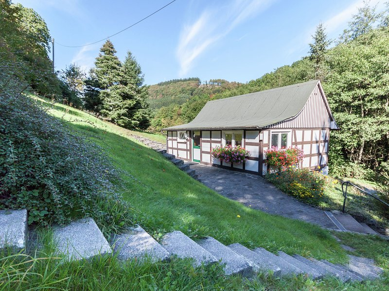 Modern Holiday home in Schmallenberg with Garden, holiday rental in Schmallenberg