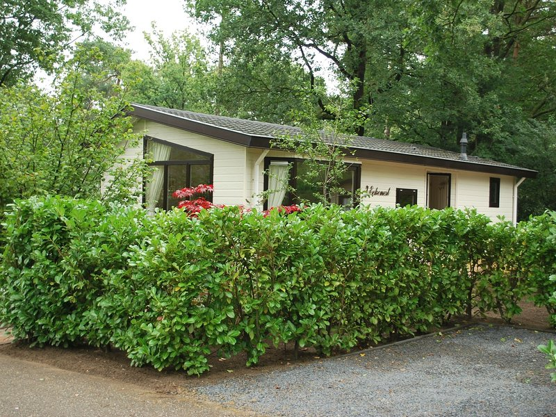 Tidy chalet with garden and WiFi, close to Park De Veluwe, casa vacanza a Lunteren