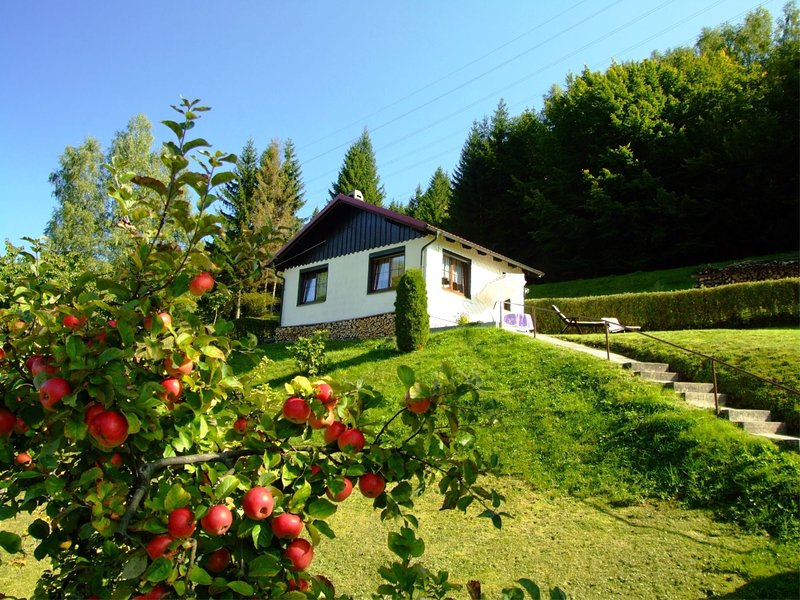 Cozy Cottage in Langenbach Thuringia near Lake, casa vacanza a Frauenwald