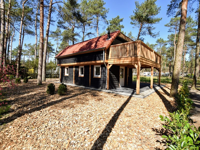 Magnificent, modern forest villa on the edge of the Veluwe region, vacation rental in Doornspijk