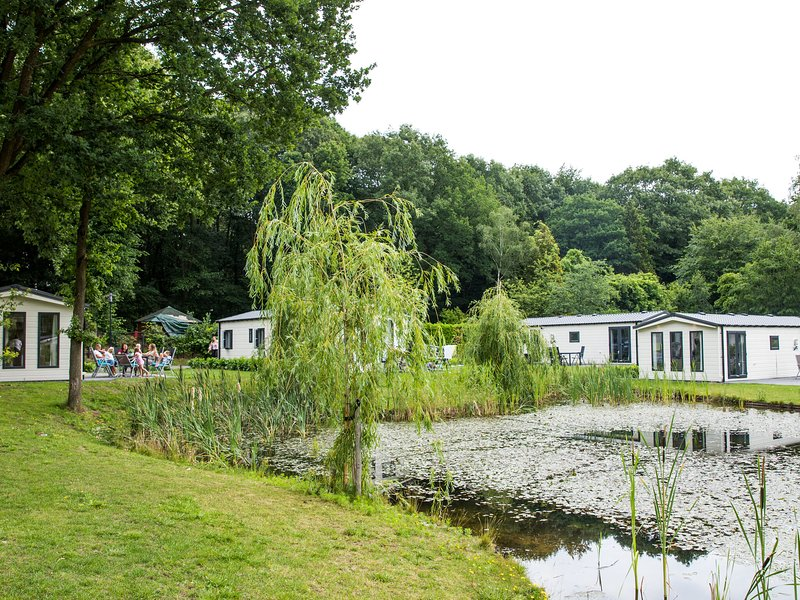 Cosy chalet with WiFi, within the nature of De Veluwe, casa vacanza a Lunteren