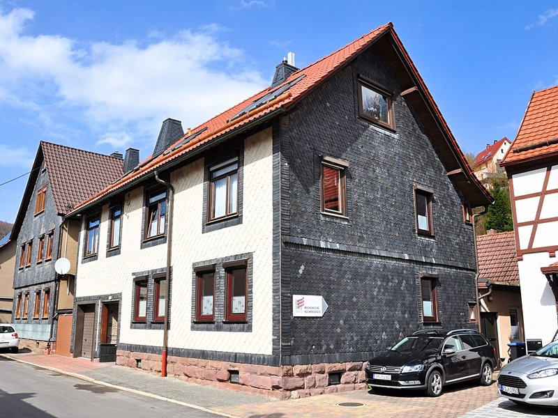 Barrier-free, modern apartment with terrace at the foot of Hallenburg Castle, holiday rental in Frankenhain