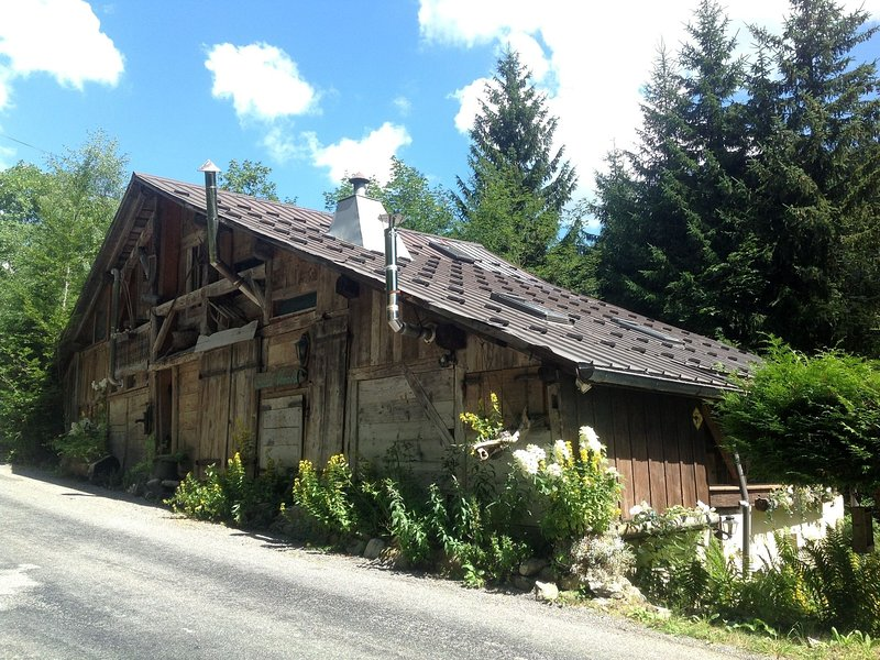 Wooden Chalet in the Alpine Commune of Taninges, vacation rental in Chatillon-sur-Cluses