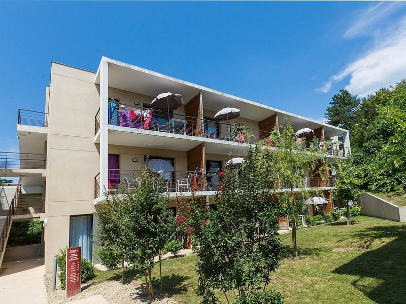 Modern apartment in the medieval Chinon in the Loire, holiday rental in Riviere