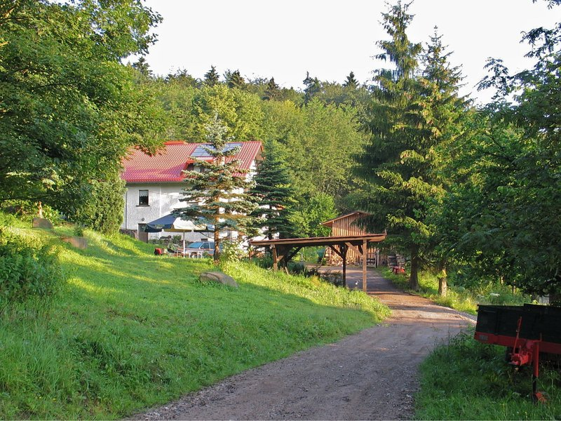 Modern Apartment in Brotterode with Sauna, vacation rental in Struth-Helmershof