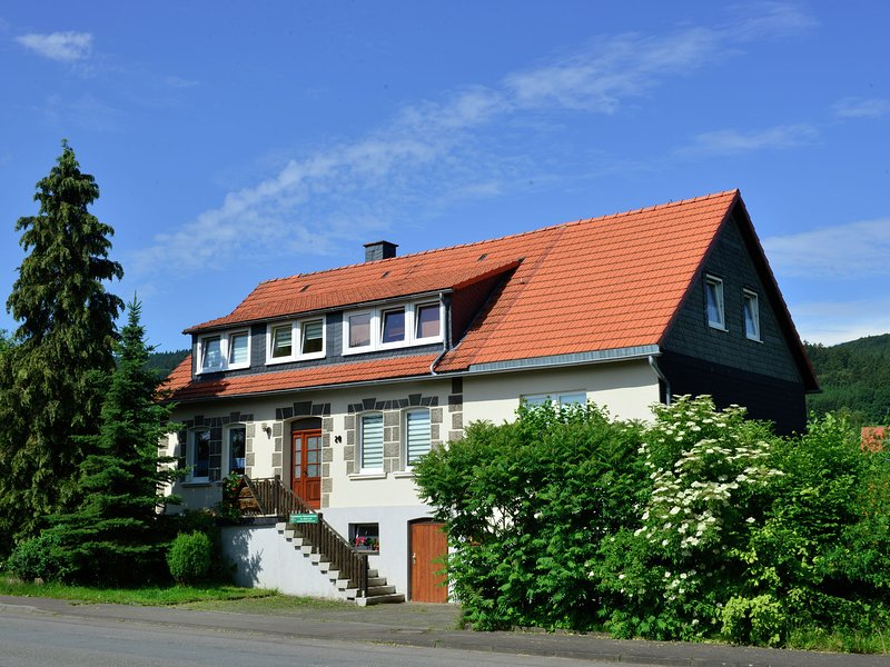 Modern Apartment in Stormbruch near Ski Area, holiday rental in Heringhausen