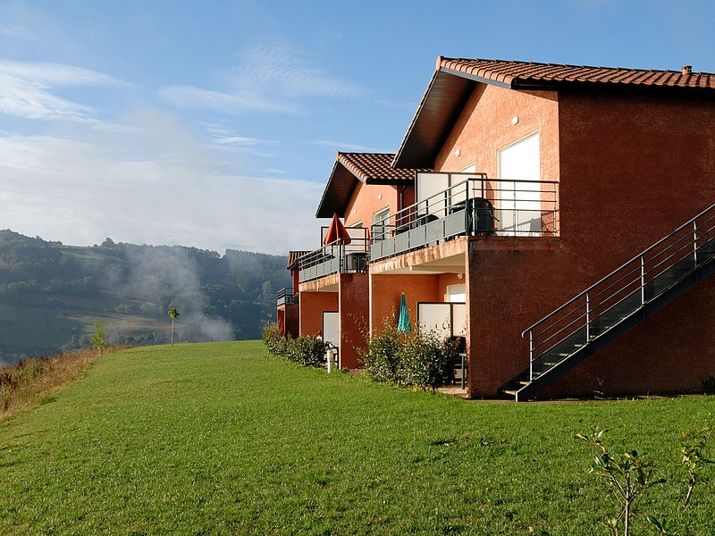 Authentic apartment with a dishwasher, in a green area, holiday rental in Saint-Sernin-sur-Rance
