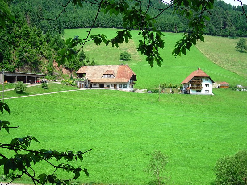A four person holiday home in a delightful, quiet area., vacation rental in Hofstetten
