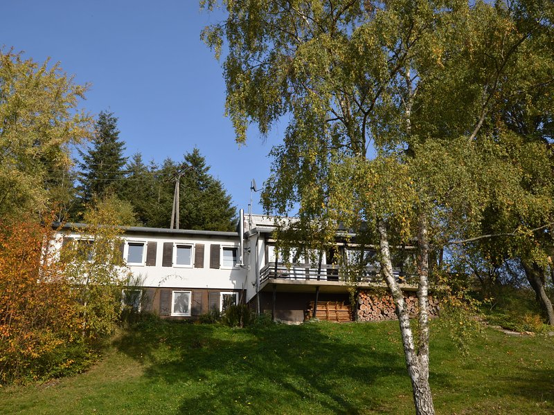 Modern Holiday House near Forest in Kleinich, holiday rental in Bollenbach