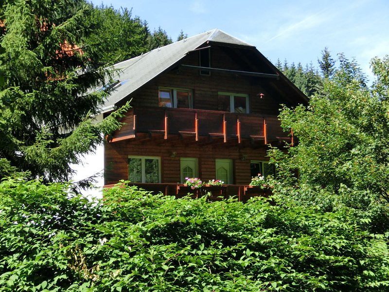 Fabulous Apartment in Heubach Germany in the Forest, location de vacances à Lauscha