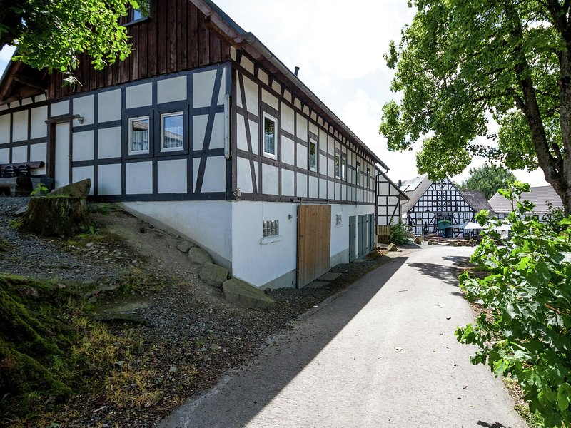 Modern Holiday Home in Vellinghausen near Ski Area, vacation rental in Meschede