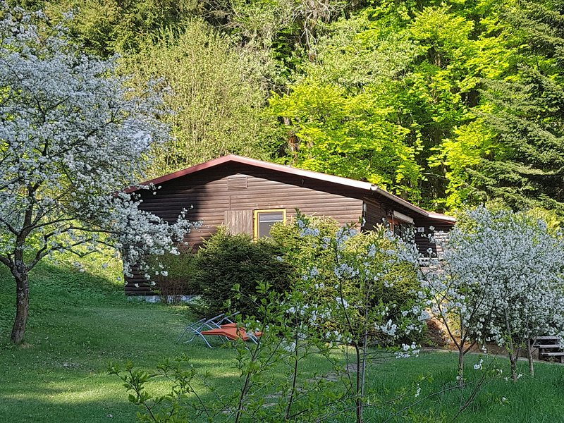 Charming detached holiday home in an absolutely quiet spot with large garden, holiday rental in Treffelstein