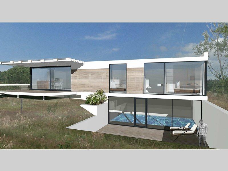 Detached luxury villa with Turkish steam bath, sea at 400 m., vacation rental in Den Hoorn