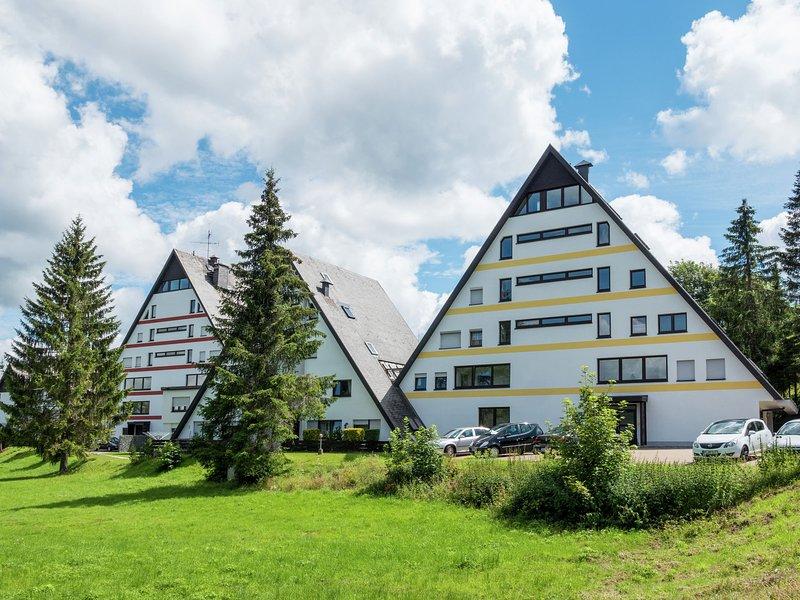 Charming Apartment in Schönwald im Schwarzwald With Sauna, vacation rental in Furtwangen
