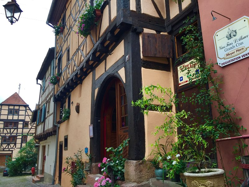 A Vintage Apartment in Riquewihr with Terrace, alquiler de vacaciones en Riquewihr