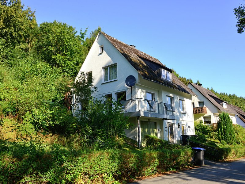Luxury Holiday home in Brilon-Wald Sauerland with private terrace, vacation rental in Olsberg