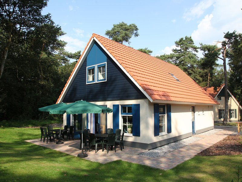 Detached holiday home with dishwasher, in a nature reserve, vacation rental in Zwiggelte