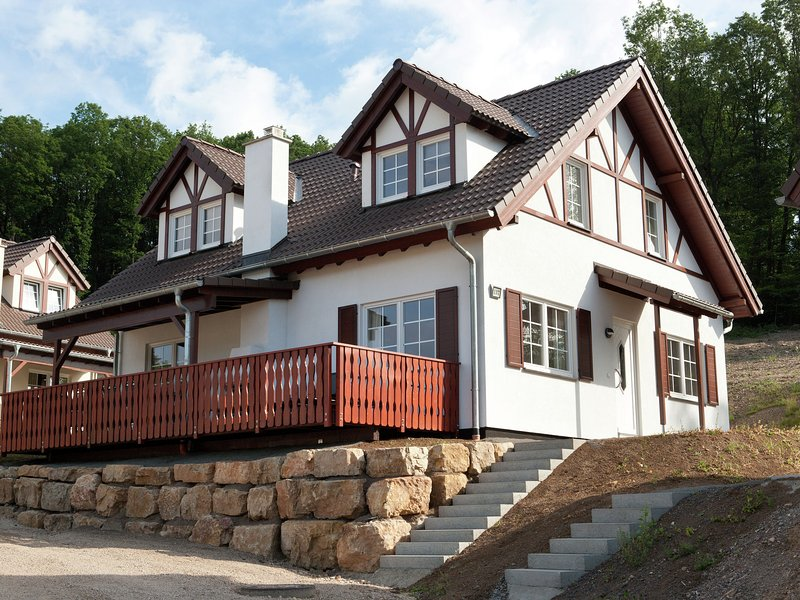 Luxury villa with fireplace near a reservoir in Nordeifel, holiday rental in Juenkerath
