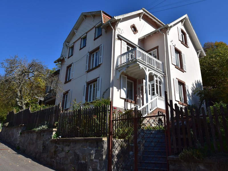 Wonderful appartment in Munster, Alsace, near wine routes and Christmas markets, vacation rental in Stosswihr