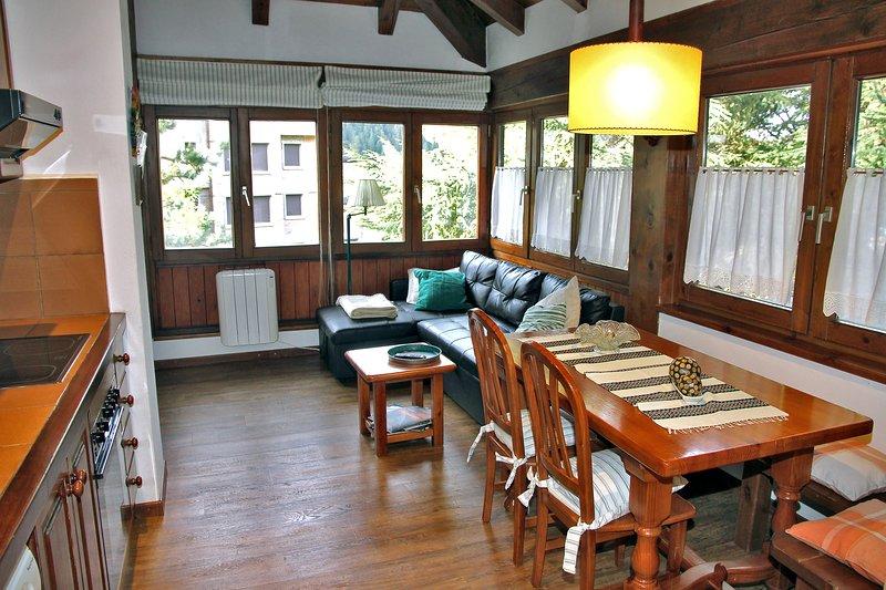 Cap de Aran Baqueira 1500, vacation rental in Baqueira