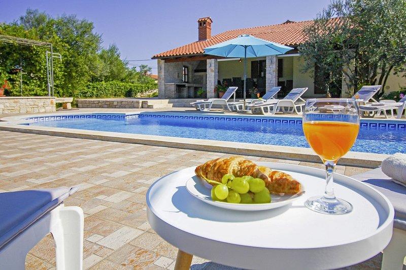 Villa Villa Lavinia - Kostesic, holiday rental in Pavicini
