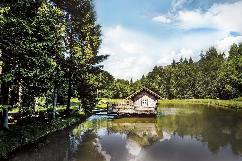 'Forest Paradise' – semesterbostad i Silale