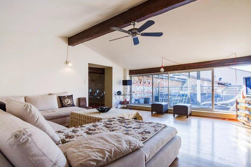 Le Comédien - magnifique et spacieux pour 6 personnes, holiday rental in Toulouse